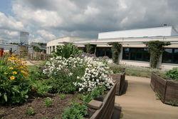 Im Garten mit Blick aufs Werkstattgebäude.