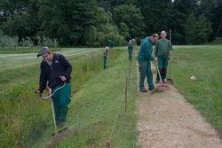 Landschaftspflege im Branitzer Park.