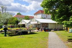 Blick auf den Werkstattladen und die Gärtnerei in der Franz-Mehring-Straße.